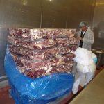 Gefrierbrand Rindfleisch